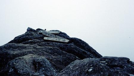 宮ノ浦岳:The summit of miyanoura dake